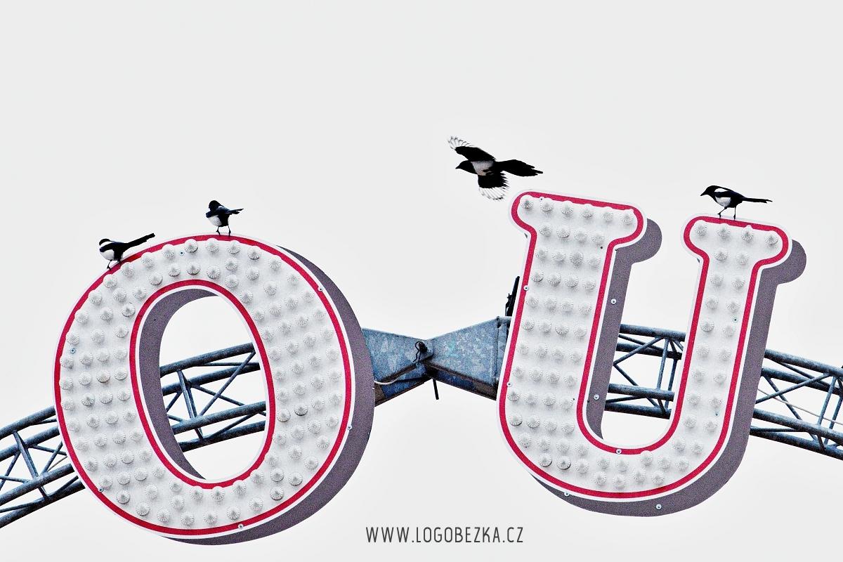 IMG_8689_proweb_pro logobezka